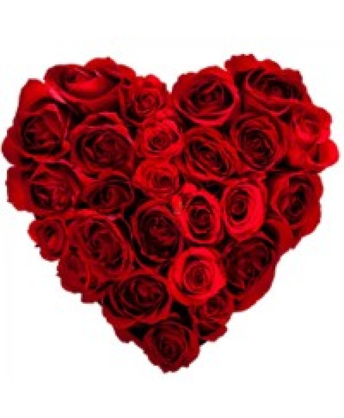 50 Red rose with heart shape