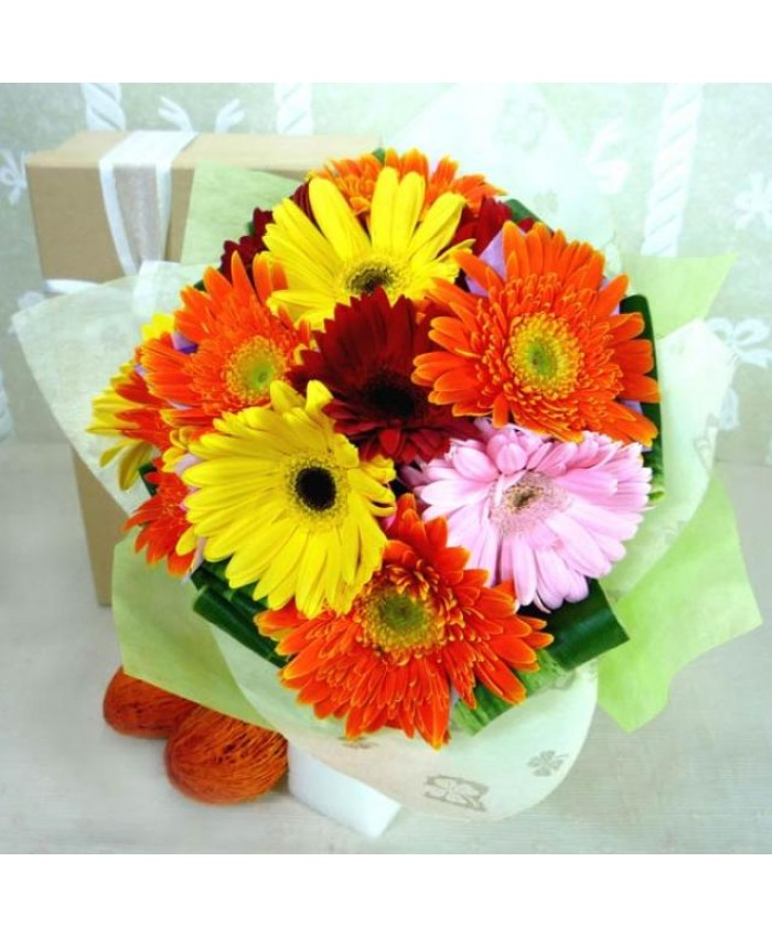 Bunch Of 25 gerbera Flowers