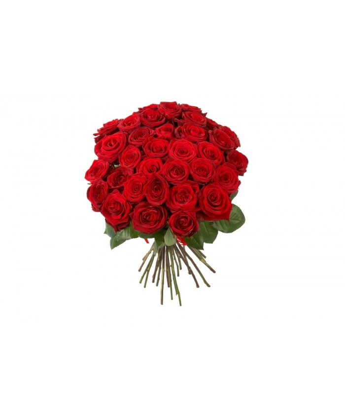 Bunch Of 15 Red Rose
