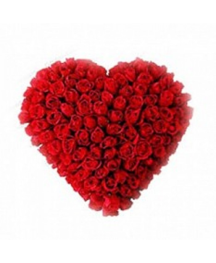 120 Roses with heart shape